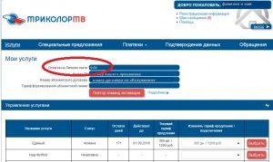 Проверка оплаты Триколор ТВ по номеру ID